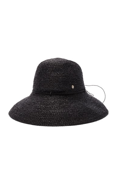 Provence 12 Hat