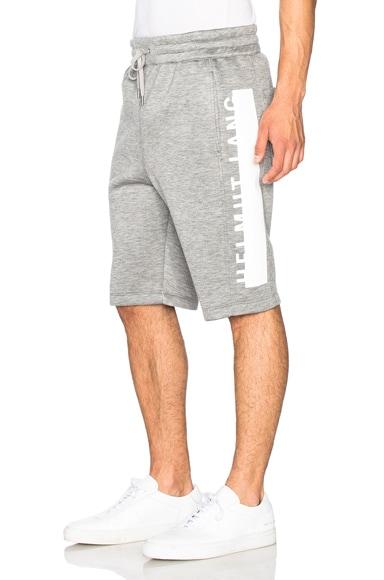 Helmut Lang Sponge Fleece Logo Track Shorts in Grey
