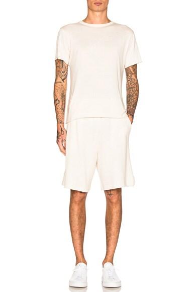 Raschel Shorts