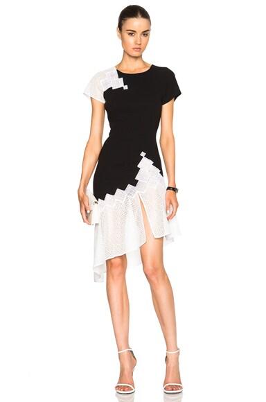 JONATHAN SIMKHAI Diamond Mesh Dress in Black & White
