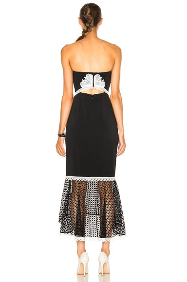 Window Pane Lace Dress