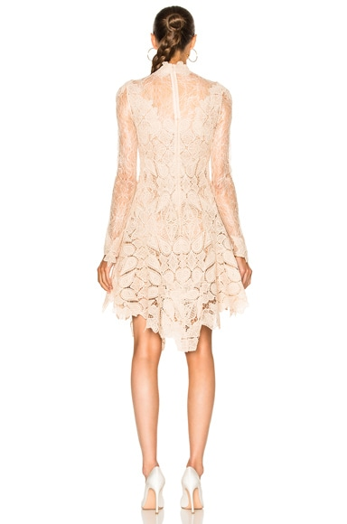 Multimedia Corded Long Sleeve Lace Dress