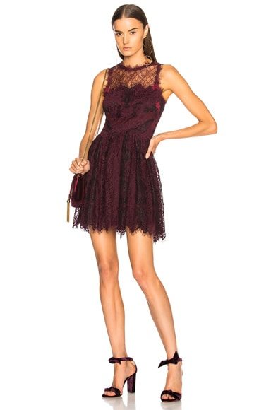 Grommet Lariat Lace Mini Dress