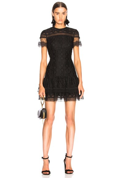 Threaded Mesh Mini Ruffle Dress