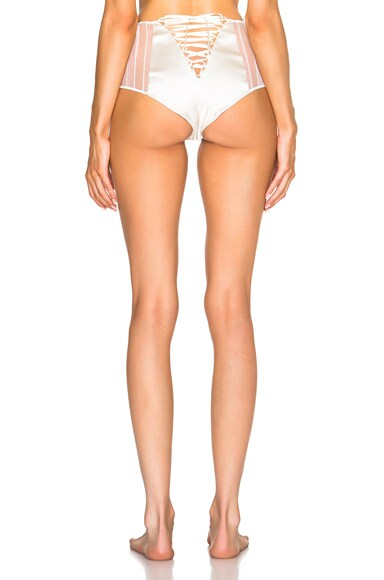 Muse High Waisted Brief