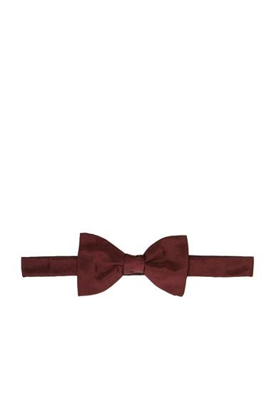 Lanvin Grosgrain Bow Tie in Burgundy