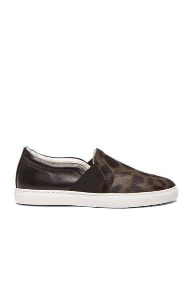 Lanvin Leopard Print Pull On Calf Hair & Leather Sneakers in Anthracite