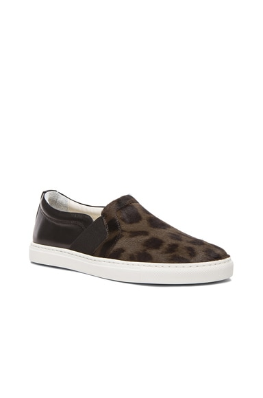 Leopard Print Pull On Calf Hair & Leather Sneakers