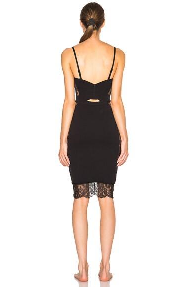 Shape Allure Dress