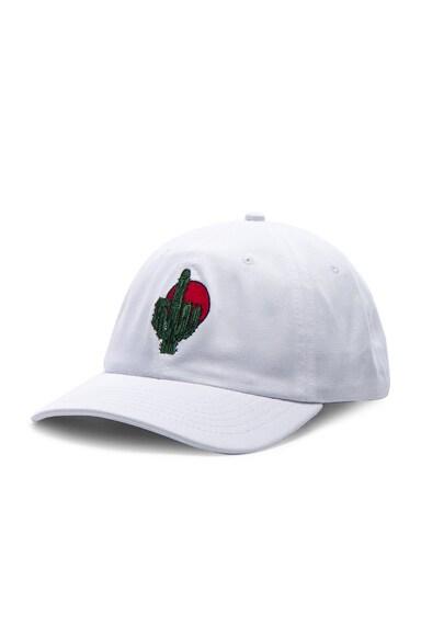 for FWRD FUFC Cactus Hat