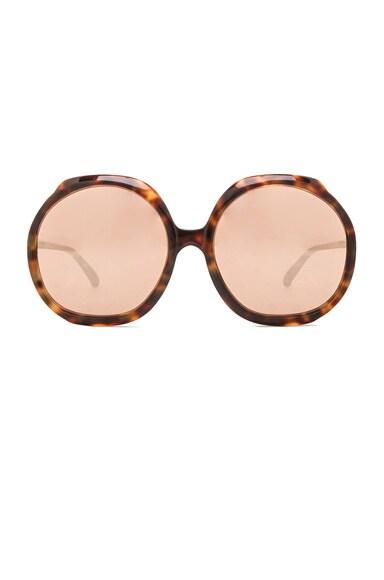 Linda Farrow Oversized Circle Sunglasses in Tortoise