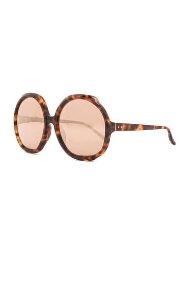 Oversized Circle Sunglasses