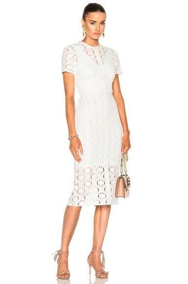Charlotte Sheath Dress