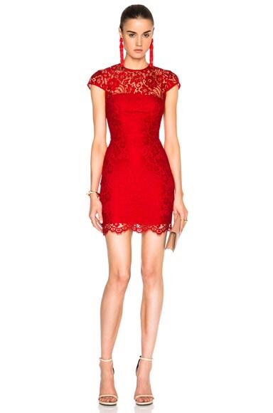 Lula Mini Dress