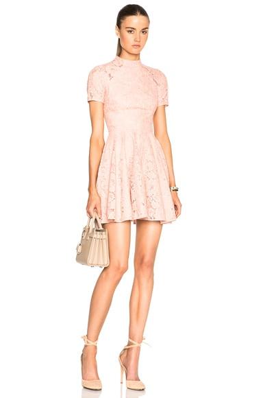 Lover Oasis Mini Dress in Dusty