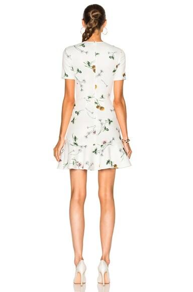 Elder Flower Scuba Dress