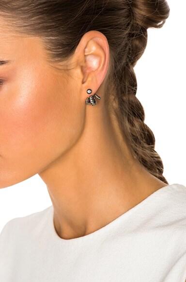Trilogy Ear Jackets