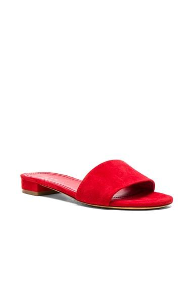 Single Strap Suede Sandals