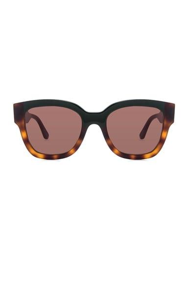 Marni Acetate Sunglasses in Green & Havana