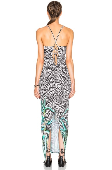 Aloe Dress