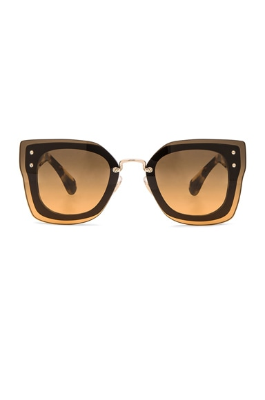 Miu Miu Square Sunglasses in Black & Light Havana