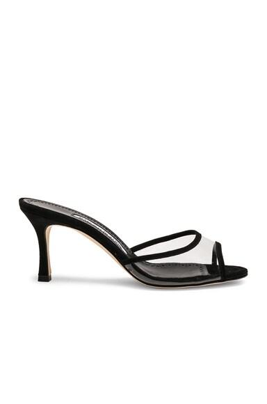 PVC Sissavy Sandals