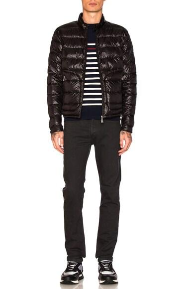 Acorus Jacket