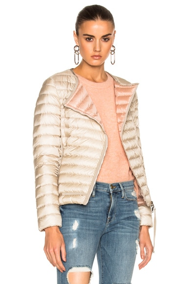 Moncler Amy Jacket in Champagne