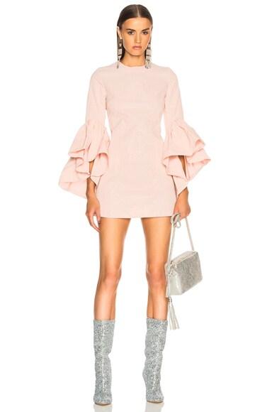 Oyster Sleeve Dress