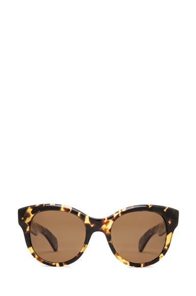 Jacey Polarized Sunglasses