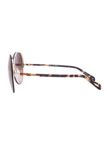 Jorie Sunglasses