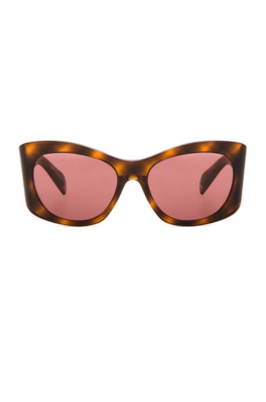 Oliver Peoples The Row Bother Me Sunglasses in Tortoise