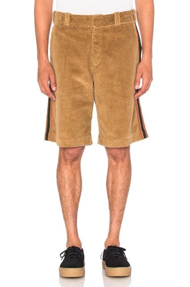 Palm Angels Corduroy Work Shorts in Beige Multi