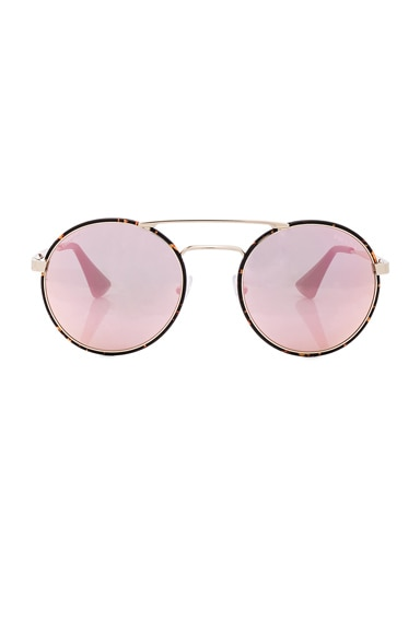 Prada Round Sunglasses in Pale Gold & Dark Havana