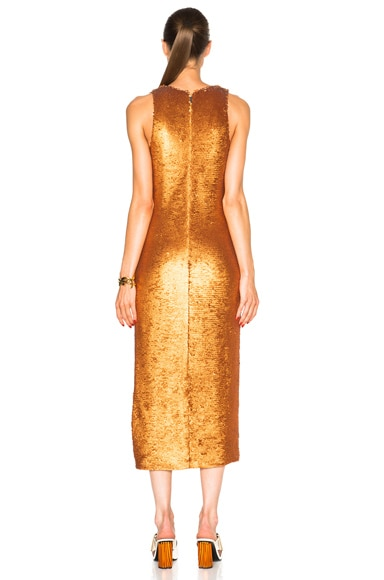 Dusted Paillette Embroidered Dress