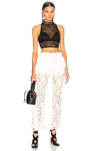 Chantilly Lace Crop Top