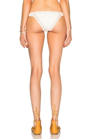 Cheeky Bikini Bottom