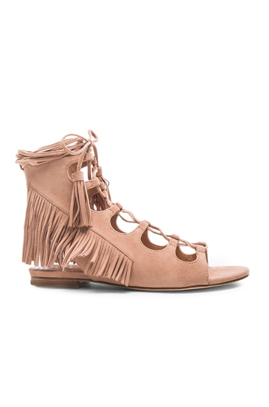 Sigerson Morrison Suede Azzia Sandals in Tan