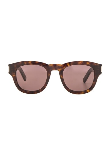 Saint Laurent Bold 2 Sunglasses in Dark Havana