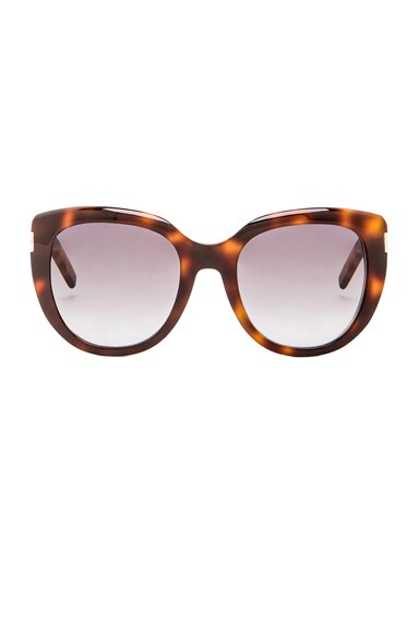 Saint Laurent 16 Sunglasses in Havana