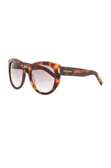 16 Sunglasses