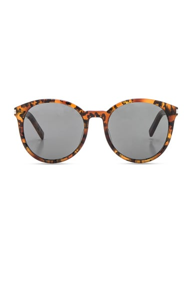 Saint Laurent Classic 6 Sunglasses in Babycat & Grey
