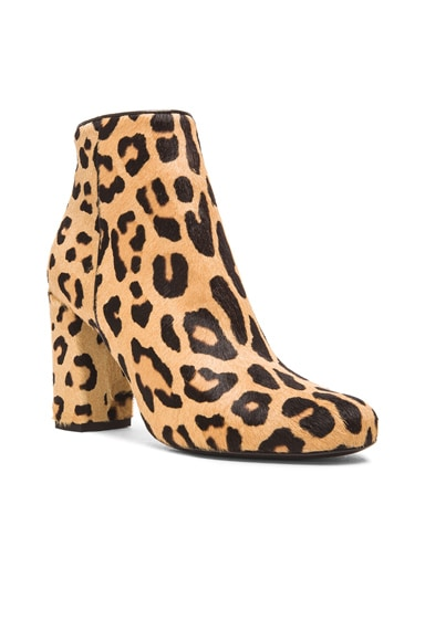Leopard Pony Babies Boots