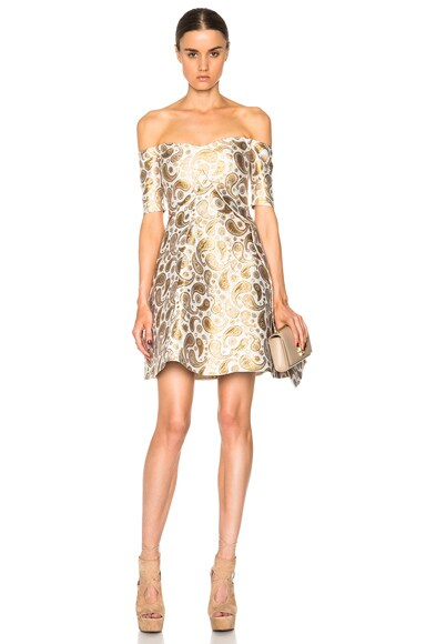 Stella McCartney Jacquard Dress in Antique Gold