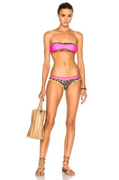Everything Bikini Bottom