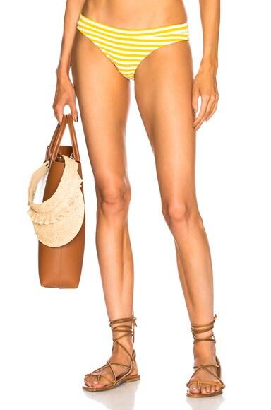 Madison Rib Bikini Bottom