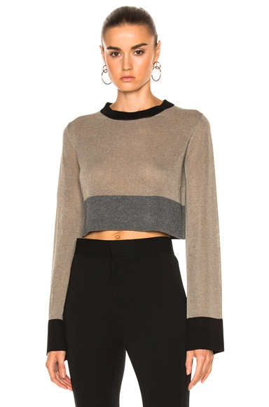 Pippo Cropped Top