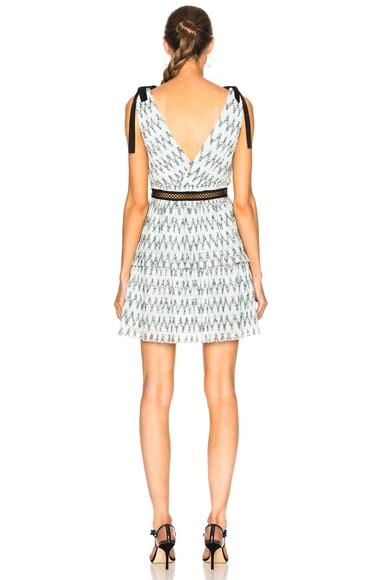 Metallic Mesh Mini Dress