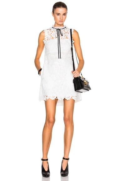 Watteau Back Mini Dress