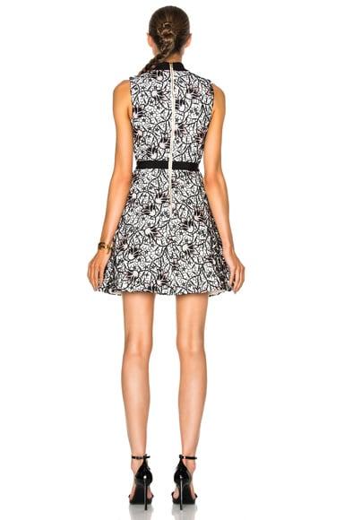 Nightshade Mini Dress
